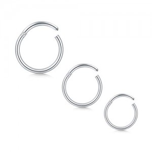 Vcmart 14G 16G 18G Hinged Seamless Clicker Segment Nose Hoop Ring Lip Septum Rings Piercing Helix Cartilage Daith Rook Tragus Earrings Hoop Piercing Jewelry 8mm 10mm 12mm
